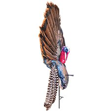 Montana Decoys Wiley Tom 3D Head Foldable Turkey Decoy