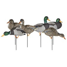 Dakota Decoy X-Treme Full Body Painted Head Mallard Duck Decoys