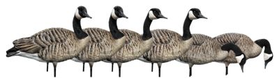 Avian-X AXP Full-Body Canada Goose Decoy Honker Pack