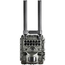 Reconyx HyperFire 2 Cellular Trail Camera Image