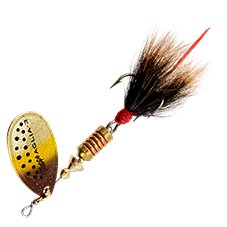 Brown Trout Brown