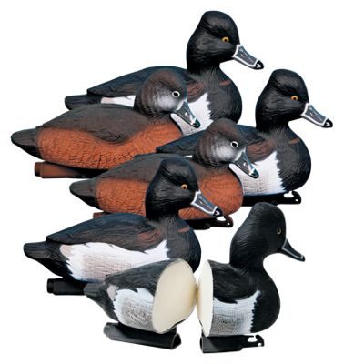 Higdon Outdoors Standard Foam-Filled Ringneck Duck Decoys