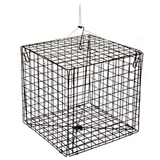 Offshore Angler 10-1/2'' Box Crab Trap