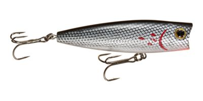 Bass Pro Shops Tourney Special Popper - Bleeding Tennessee Shad