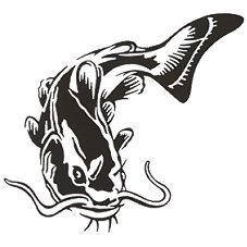 Bass Pro Shops Outdoor Action Decals - Catfish