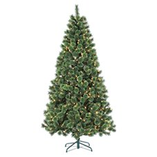 Sterling 7' Pre-Lit Cashmere Pine Artificial Christmas Tree with Clear Lights