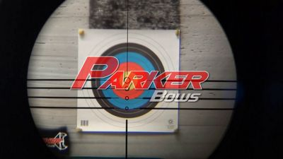 Parker Hunter 20'' Crossbow Arrows | Bass Pro Shops